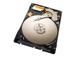 SEAGATE ST320LM010